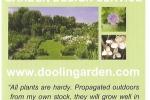 doolin-garden